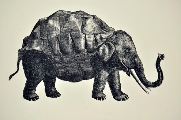 Schildkröte Elefant Tbb Erde H001 Berliner Babylon